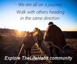 TheLifeHabit community